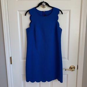 J. Crew Sleeveless Sheath Dress w/ Scallop Design